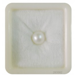 Pearl South Sea 4+ 2.7ct