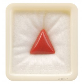 Natural Certified Coral Triangular 8+ 5.1ct